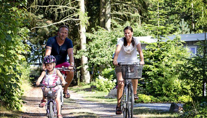 cykelfamilie